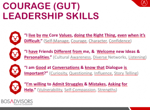 These skills are clear, simple and enjoyable for Courage Leaders.