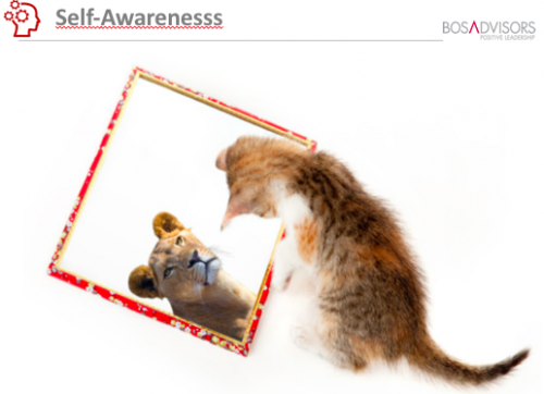 Do you see a cat or a lion in the mirror? What do others see?